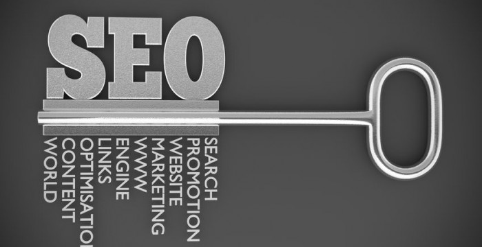 Search Engine Optimization (SEO) in 11 easy steps